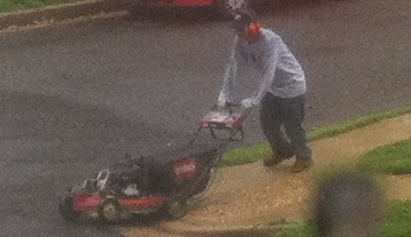 Hurricane Mowing