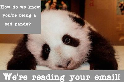 NSA Panda Reading Email