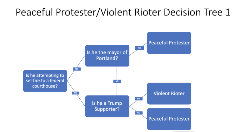Peaceful Protest Decision Tree 1