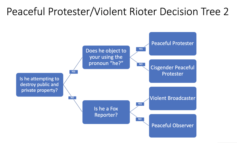 Peaceful Protest Decision Tree 2