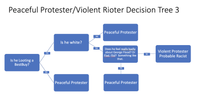 Peaceful Protest Decision Tree 3