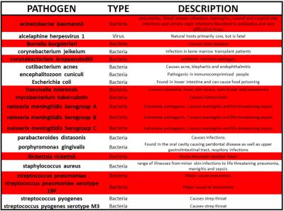 Pathogens on Masks 6