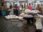 Tsukiji_fish_market_tuna